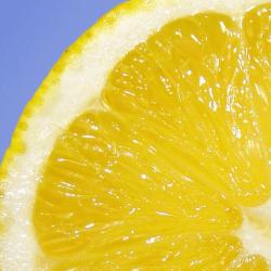 レモンはしっかり美容サポート