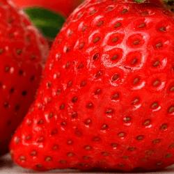 イチゴが実は健康食材