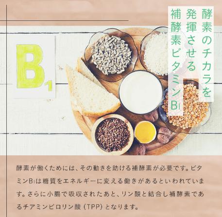 補酵素ビタミンB1